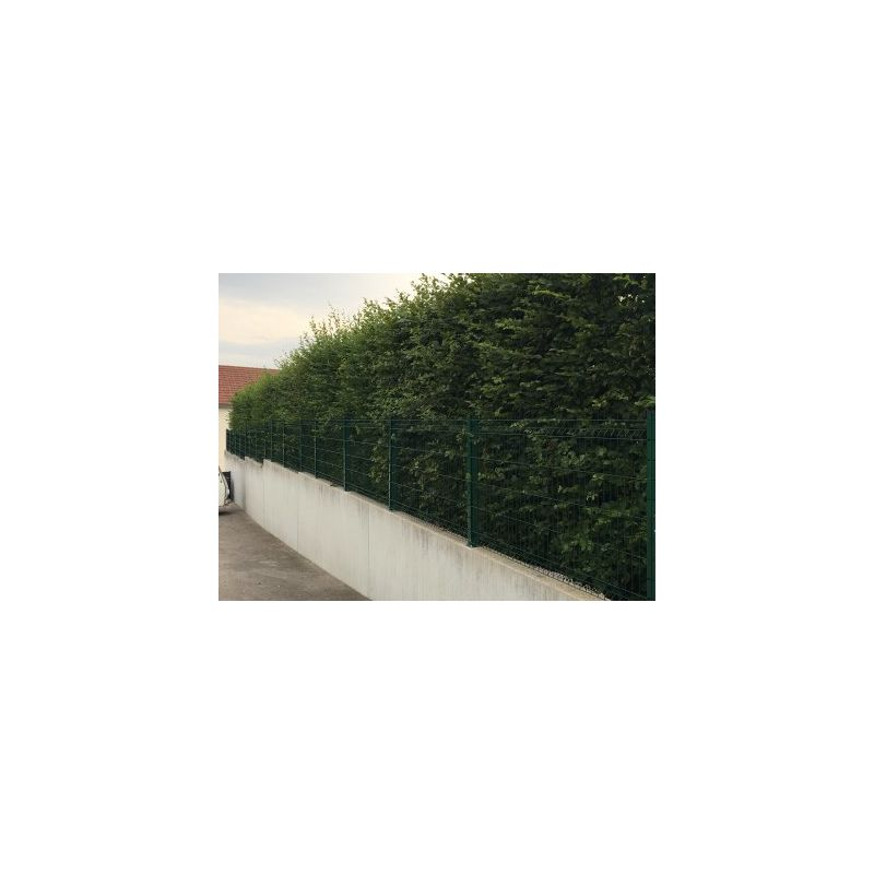 KIT GRILLAGE RIGIDE VERT 50M - FIL 4MM - SUR PLATINES - 1.23 MÈTRE - CLOTURE & JARDIN
