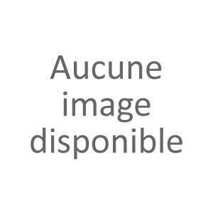 SUPERS KIT COMPLET 500 JETONS DICE POUR DÉBUTANT