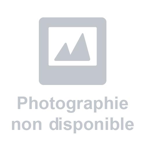 PERCEUSE À COLONNE D'ÉTABLI 600W PRE020 LEMAN