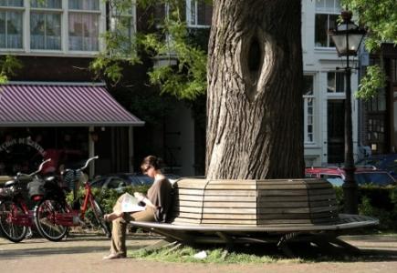 Banc public en bois pourtour arbre
