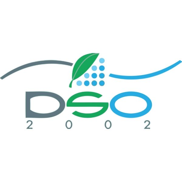 DSO 2002