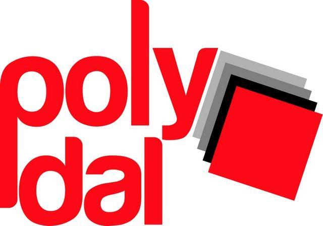 POLYDAL DALLES DE SOL CLIPSABLES