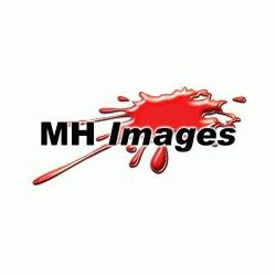 MH Images