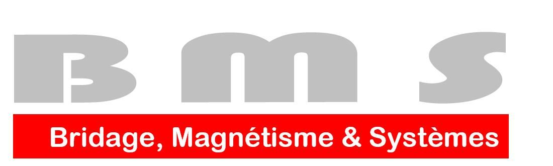 BMS INDUSTRIE - BRIDAGE, MAGNETISME & SYSTEMES SARL