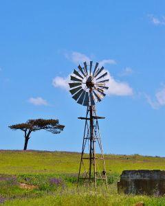 Éolienne pompage eau