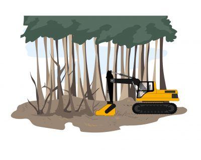 Utilisation d'un broyeur forestier