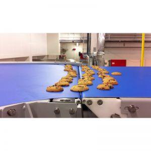 Convoyeur Bande Cookies