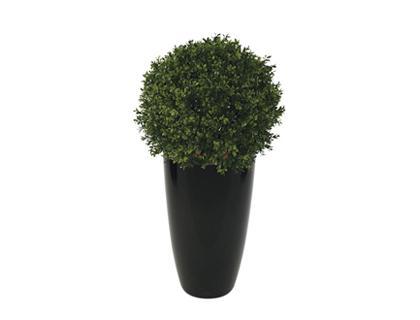 Plante et fleur d 39 interieur tous les fournisseurs for Plante plastique exterieur