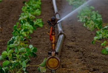 Syst 232 Me D Irrigation