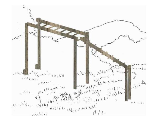 Structure parcours de santé echelle de suspension inclinée - etirements