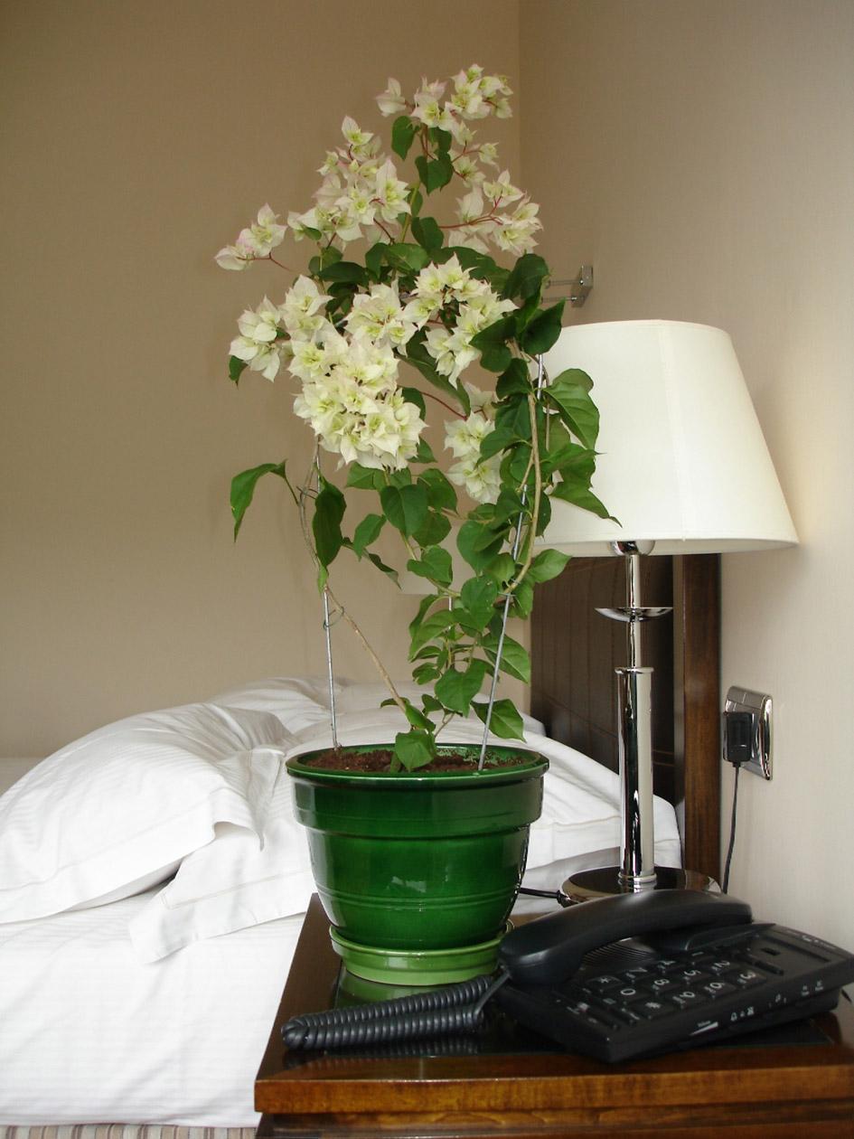 pot de fleur tous les fournisseurs jardini re bac. Black Bedroom Furniture Sets. Home Design Ideas