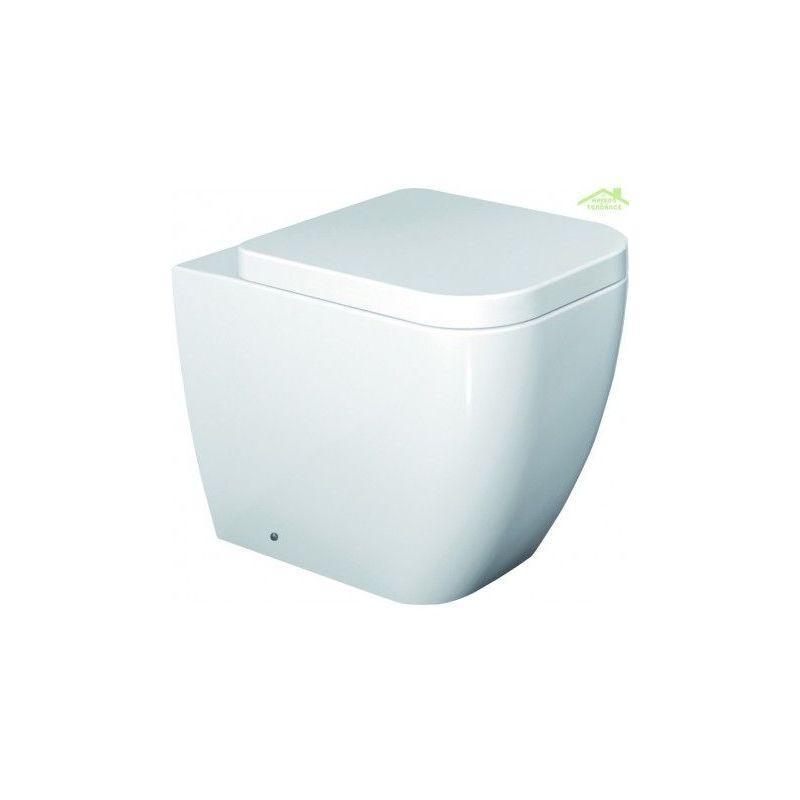 abattant wc avec frein de chute achat vente abattant. Black Bedroom Furniture Sets. Home Design Ideas