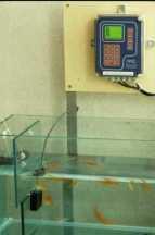 detecteur de pollution de l 39 eau truitosem. Black Bedroom Furniture Sets. Home Design Ideas