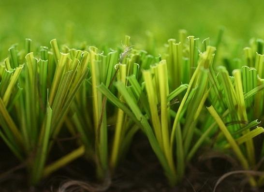 ETATS-UNIS - Le ministère de l'Agriculture dispense le gazon OGM d'autorisation