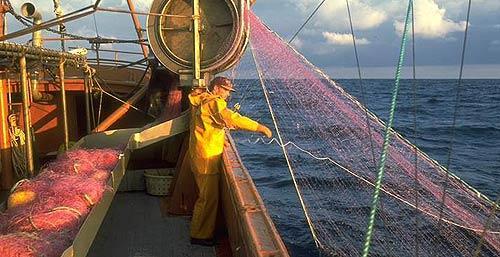 Filet de pêche - filet fin