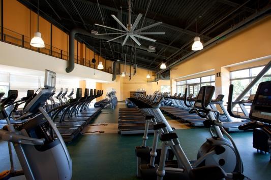 ventilateur de plafond geant pour gym et fitness. Black Bedroom Furniture Sets. Home Design Ideas