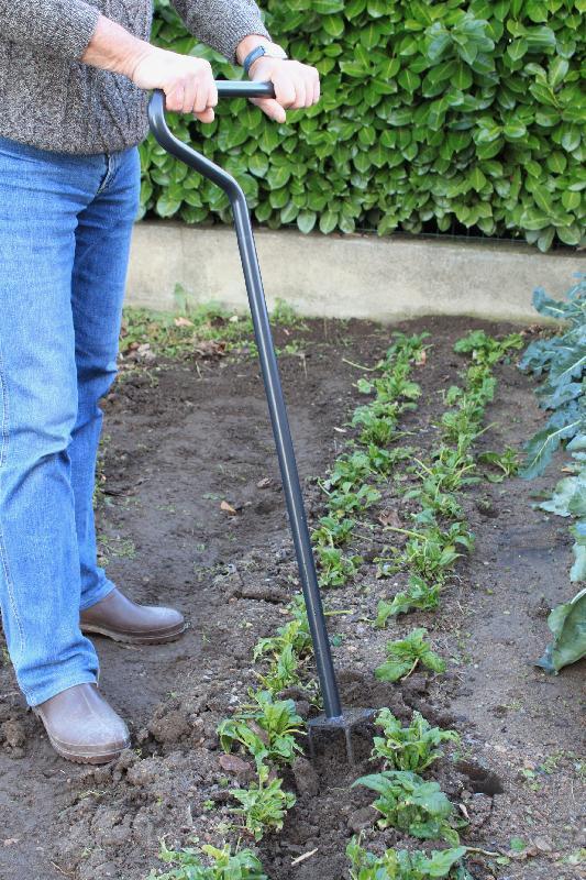 Travail du sol comparez les prix pour professionnels sur - Griffe de jardin ...