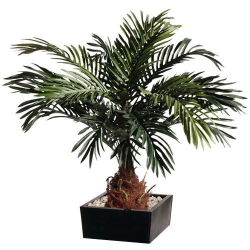 Cycas artificiel for Achat palmier artificiel