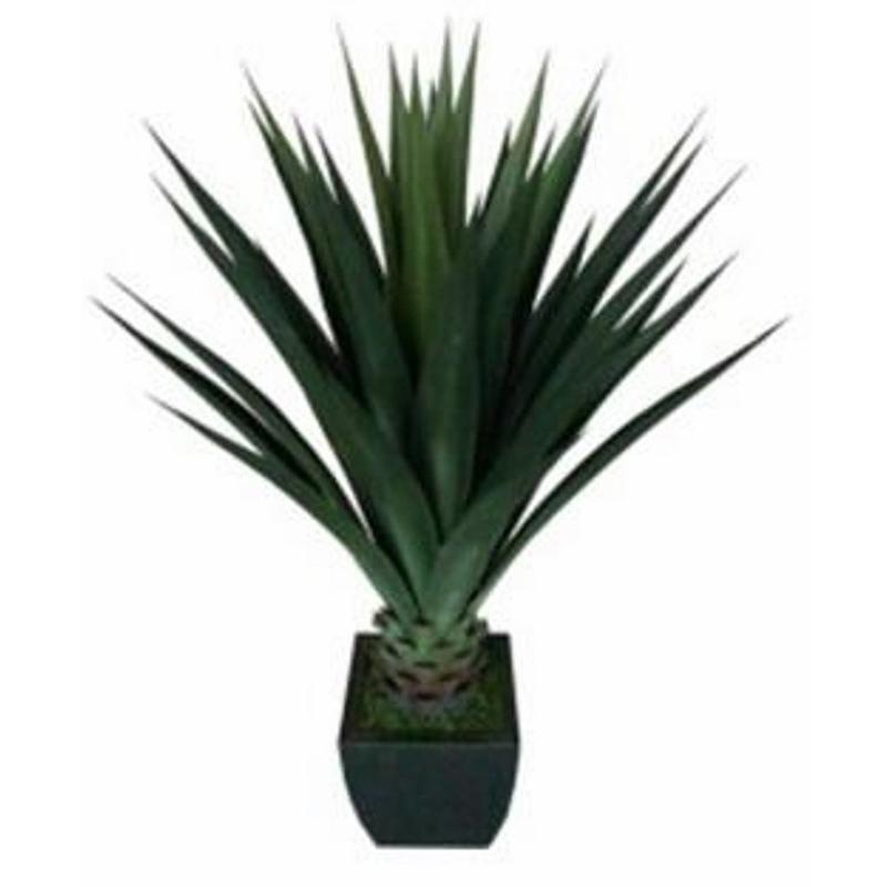 Plantes d 39 int rieur pegane achat vente de plantes d for Plante artificielle prix