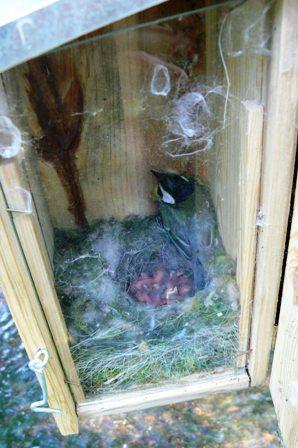 nichoir tous les fournisseurs s en bois nid d 39 oiseaux terre cuite s avec poche maison. Black Bedroom Furniture Sets. Home Design Ideas