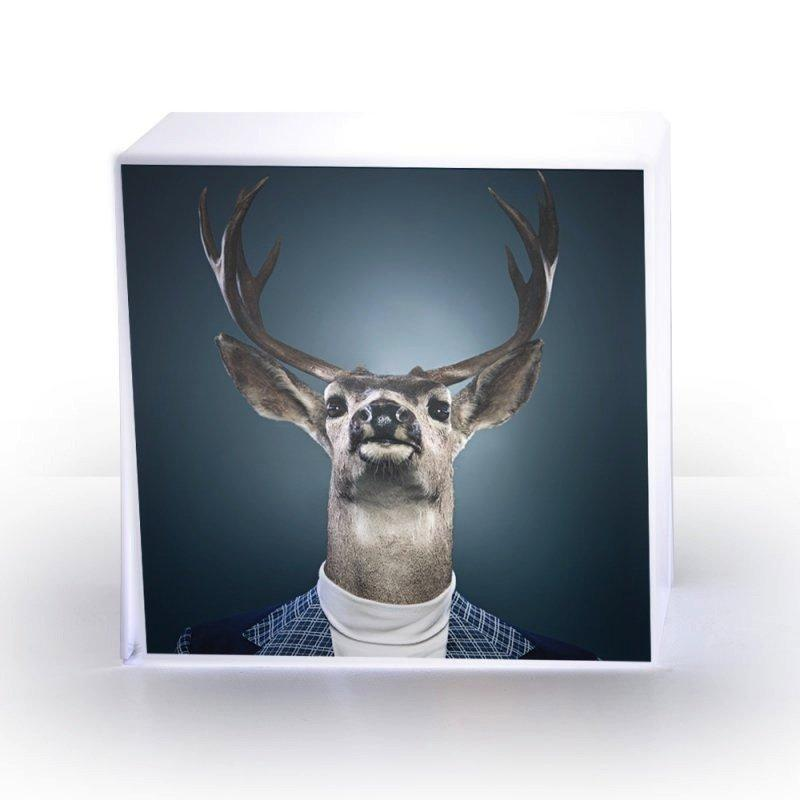 lampe cube cerf plexi acrila design. Black Bedroom Furniture Sets. Home Design Ideas