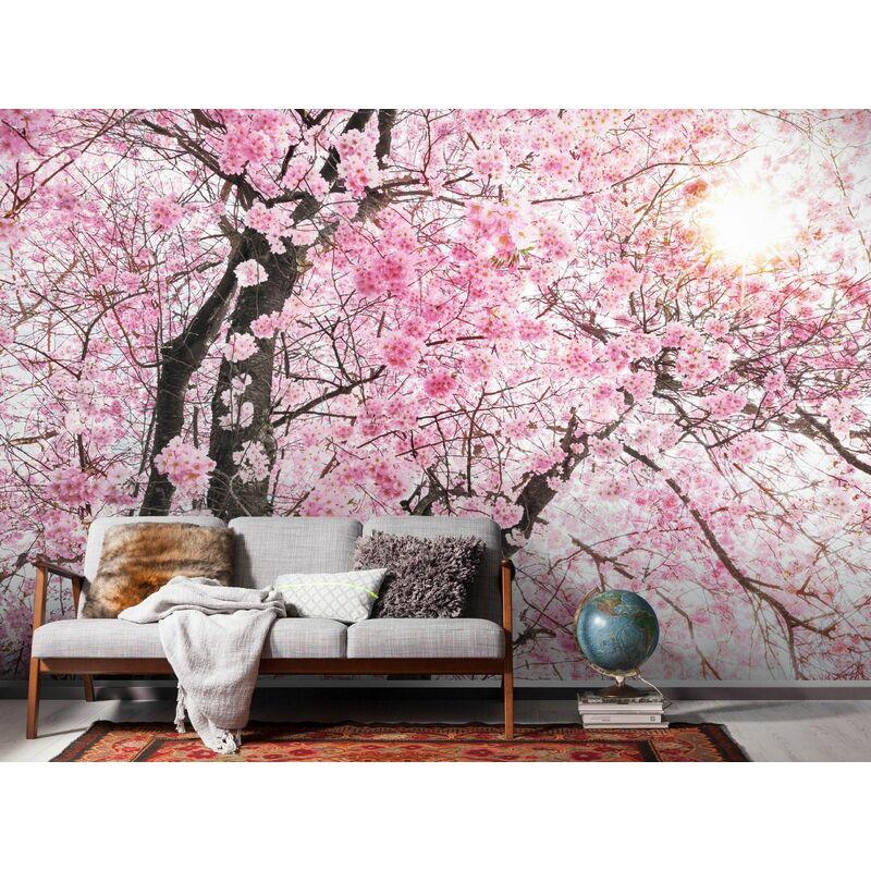posters d coratifs comparez les prix pour professionnels. Black Bedroom Furniture Sets. Home Design Ideas