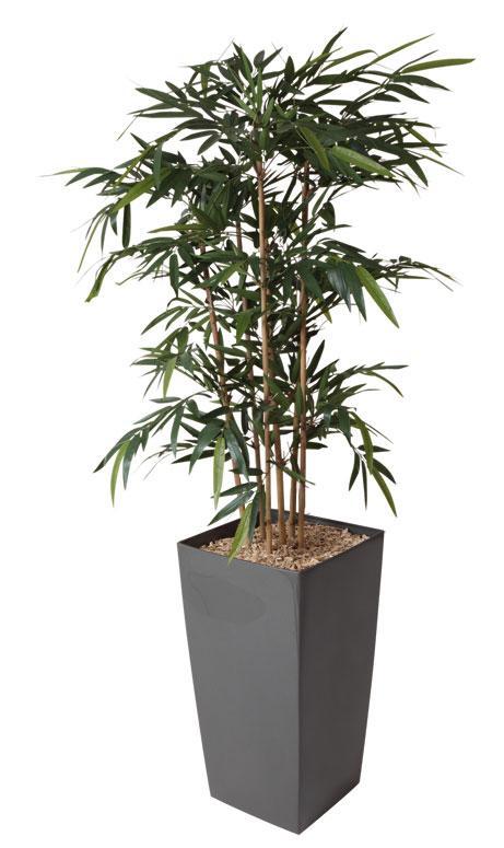 plante et fleur d 39 int rieur tous les fournisseurs boules d 39 herbe bambou artificiel. Black Bedroom Furniture Sets. Home Design Ideas
