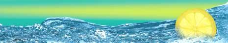 GAZ INDUSTRIELS - DIOXYDE DE CARBONE