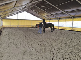 Construction carriere equestre