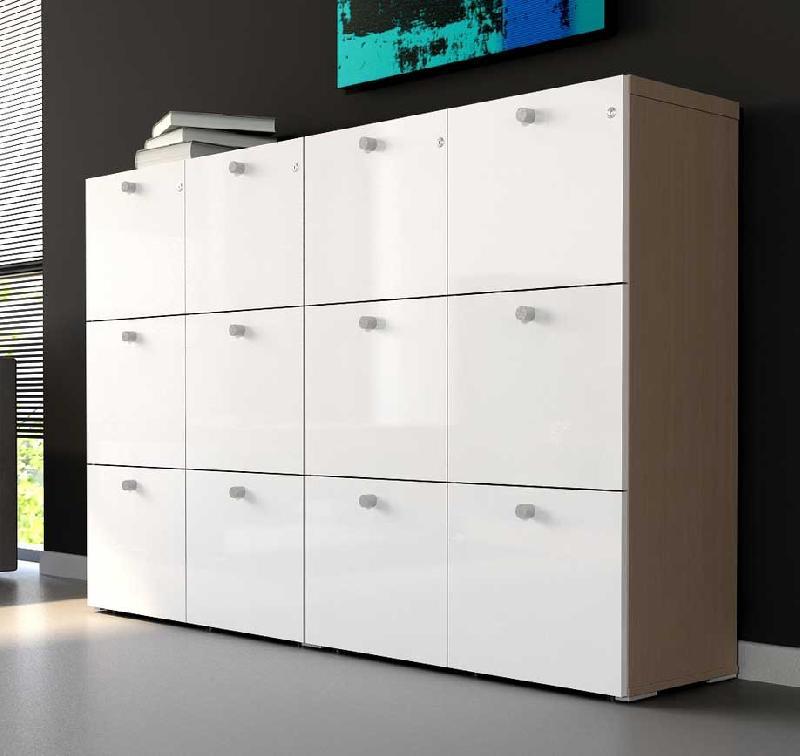 armoire d 39 atelier tous les fournisseurs armoire a casiers armoire a balais armoire a. Black Bedroom Furniture Sets. Home Design Ideas