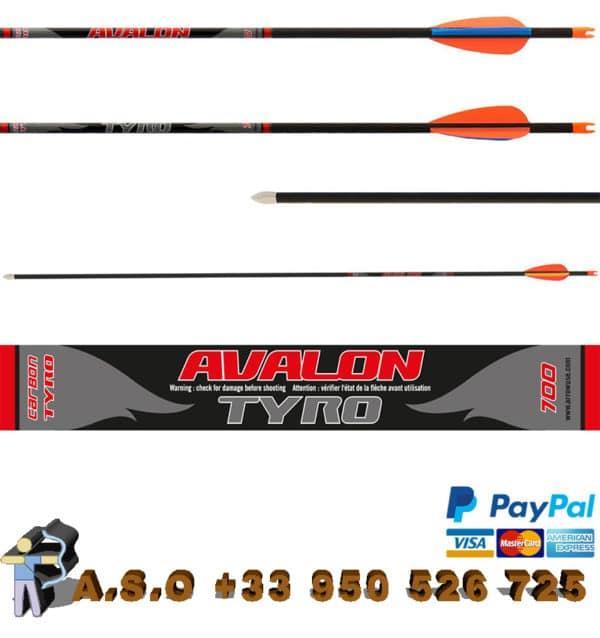 Avalon – flèches carbone tyro 4.2
