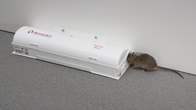 piege a rats et souris tous les fournisseurs piege a rats. Black Bedroom Furniture Sets. Home Design Ideas