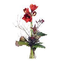 Fleurs et compositions comparez les prix pour for Amaryllis en bouquet