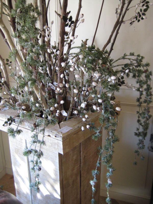 Branches tombantes for Plantes interieur tombantes
