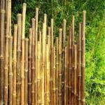 cloture irreguliere japonaise en bambou noir nini 1 50mx1 70 2m canisse en bambou. Black Bedroom Furniture Sets. Home Design Ideas