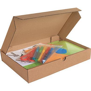 Boîte extra-plate 500 x 350 x 50