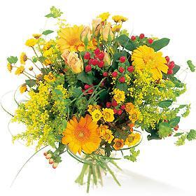 Vaj Pov Hmoob tus Vaj - Page 3 Bouquet-de-fleurs-cuba-255354