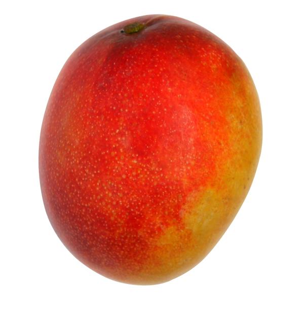 Pulpe de mangue