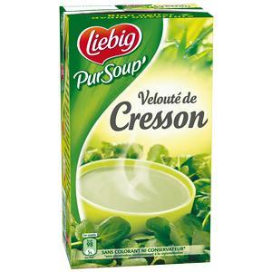 Pursoup' de liebig velouté cresson 1 l