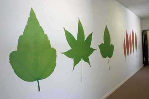 Vinyle polymère adhésif de décoration murale vcr200wg1