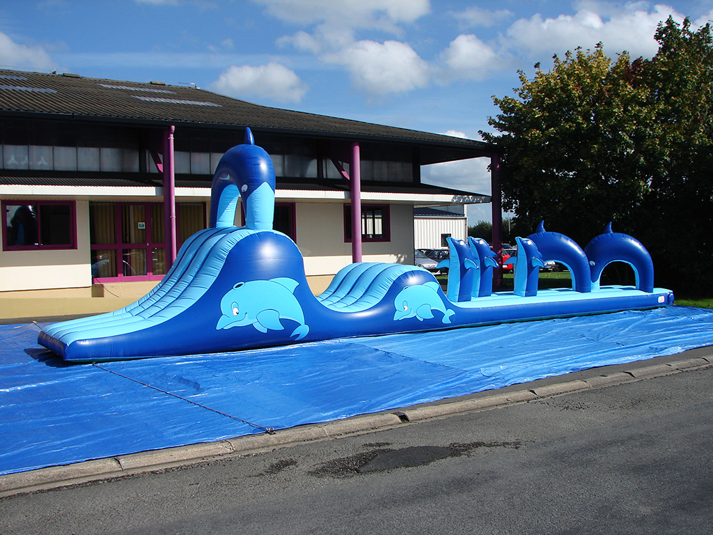 Aqua fun dauphin gonflable for Gonflable pour piscine