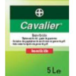 Protection insecticide cavalier