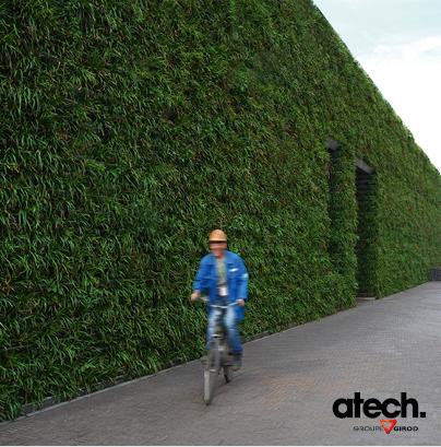 Murs vegetaux et treillages tous les fournisseurs mur vegetal mur vegetal suspendu mur - Habiller un mur exterieur en beton ...