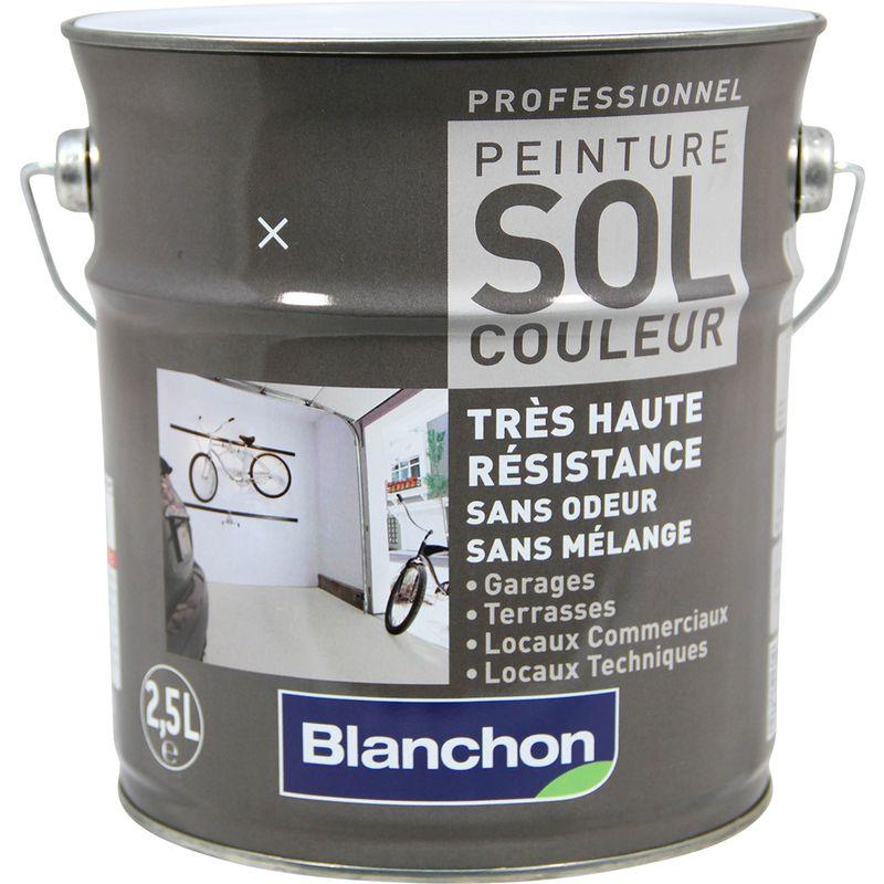 peinture sol couleur blanchon 2 5l gris clair comparer les prix de peinture sol couleur. Black Bedroom Furniture Sets. Home Design Ideas