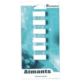 PLOTS MAGNETIQUES-AIMANTS BUSINESS 12 X 25 MM BLISTER DE 6 BLANC