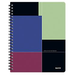 CAHIER DOUBLE SPIRALE LEITZ A4 PROJECT BOOK EXECUTIVE 160 PAGES 90 G/M² ASSORTIMENT