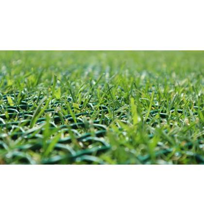 Protection de pelouse grille tr - 2m x 30m - référence :1803