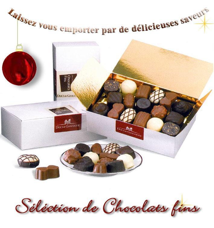 CHOCOLATS FINS - 250G DUCS DE GASCOGNE