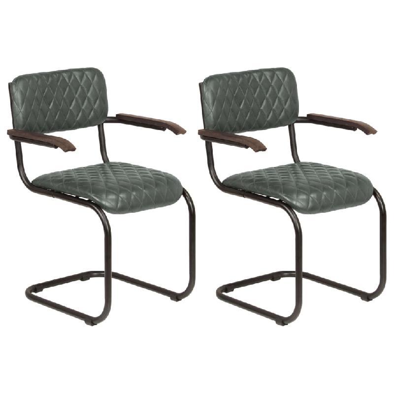 Lot de deux chaises avec accoudoirs cuir véritable gris 1902195