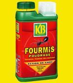 Insecticide anti-fourmis en poudrage